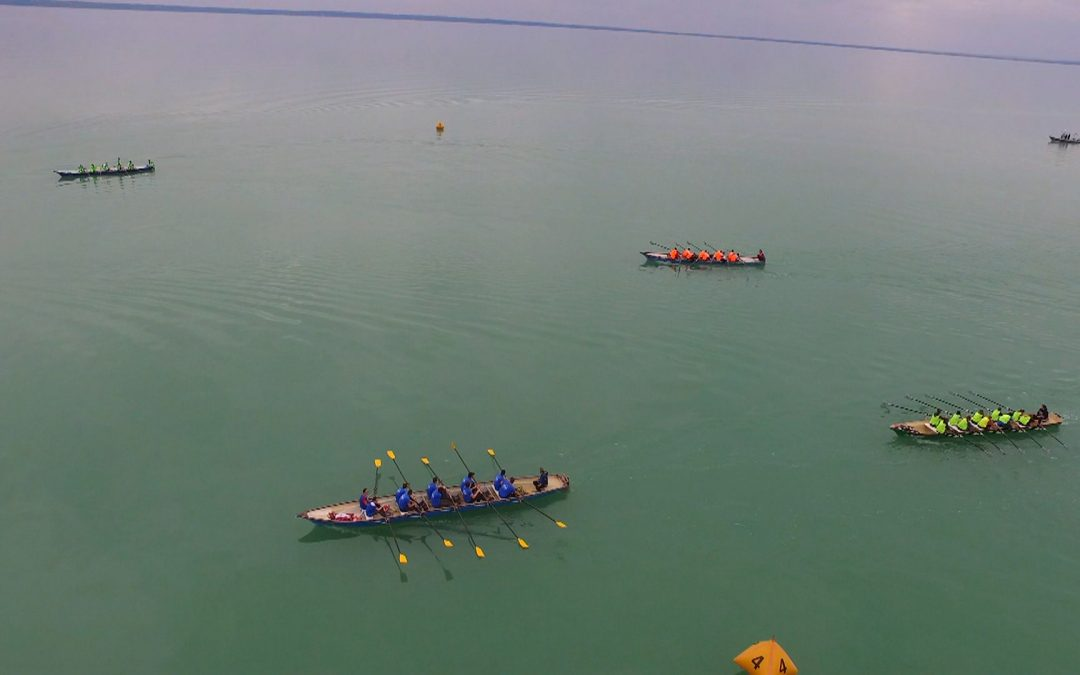XIX. Balaton Regatta, Balatonalmádi 2019 – VIDEÓ