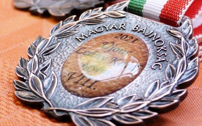 Újra a páston. Nagykanizsán rendezték az Újonc Kard Országos Bajnokságot. – VIDEÓ