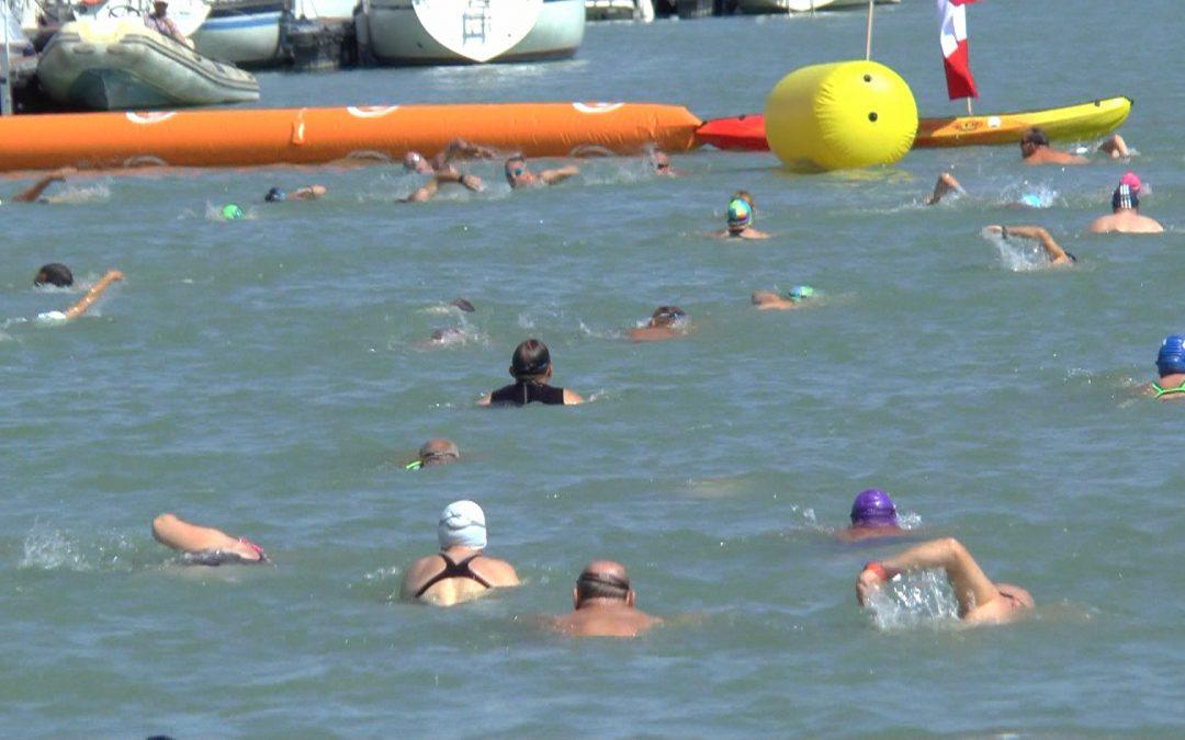 VI. BÚI Kikötő Úszás, Balatonfenyves – VIDEÓ